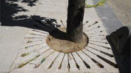 Ağaç Dibi Bordür, Izgara